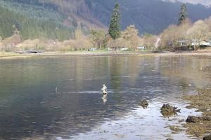 Fishing-on-Loch-Long